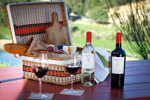 Picnic at Fritz Underground Winery